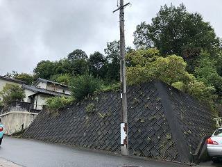 東広島市八本松町正力の売土地,売り地の外観図